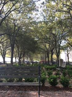 Sitting areas under the trees at Waterfront Park